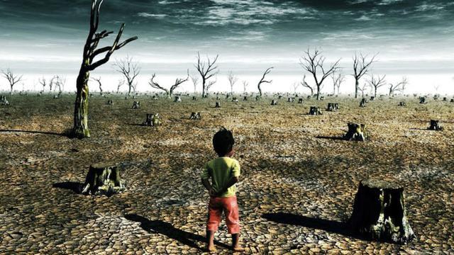 KLHK Fokuskan Aksi Mitigasi dan Adaptasi Menuju COP-26