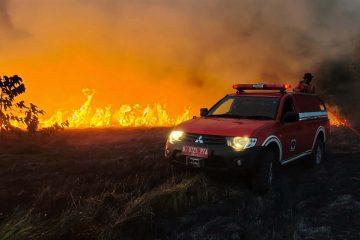 Hasil Riset, Desa Tangguh Mampu Perkuat Mitigasi Bencana Karhutla