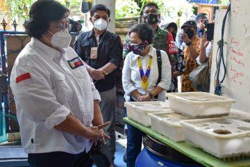 Kampung Iklim Akan Diperluas serta Berjejaring