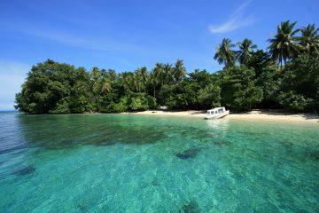 PKSPL IPB University Inisiasi Penguatan Kelembagaan Ekosistem Pesisir di Raja Ampat Papua Barat