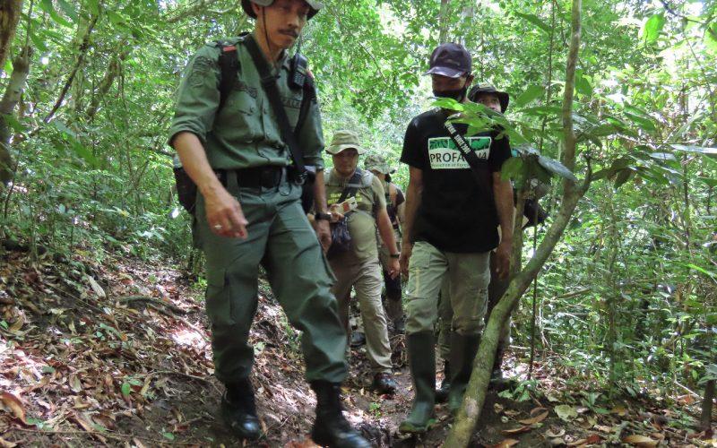 BBKSDA Jatim dan ProFauna Patroli Bersama di Cagar Alam Pulau Sempu