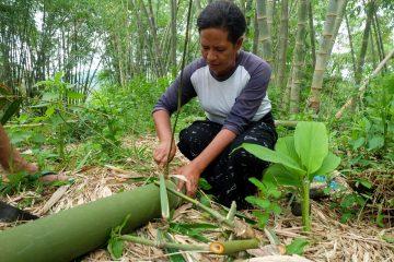 Gender, Konservasi Lingkungan dan Perubahan Iklim