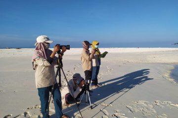 Taman Nasional Taka Bonerate Lakukan Inventarisasi Burung Pantai