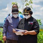Menteri LHK Tinjau Progres Forest City di Pembangunan Ibukota Negara
