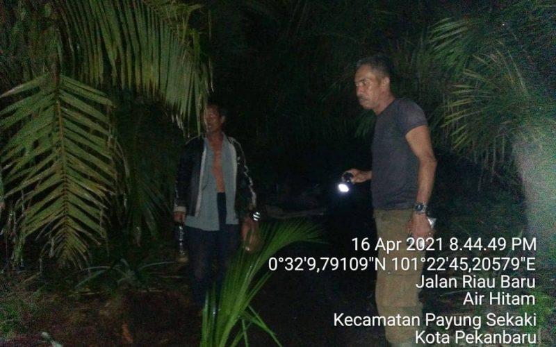 Mitigasi Konflik Gajah Sumatera di Kec. Payung Sekaki Kota Pekanbaru