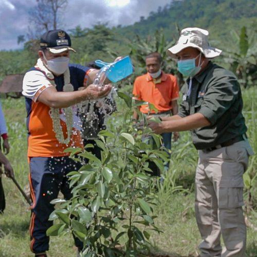 Pemulihan Ekosistem di TN Meru Betiri Jember Melalui Sambung Srawung, Pantang Mundur Sakdurung Tandur