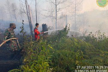 Balai TN Tesso Nilo Bersama Tim Terpadu Padamkan Kebakaran Hutan dan Lahan